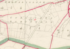 Birchall (Curraveha)