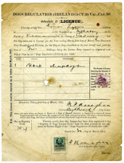 Dog Licence 1912. Thomas Lyons, Tullaboy