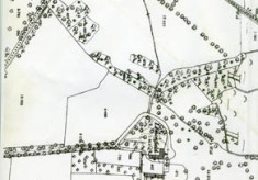 Map 1898. Detail, Lemonfield, Oughterard