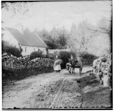 Donkey and cart on the Glann Road c.1860