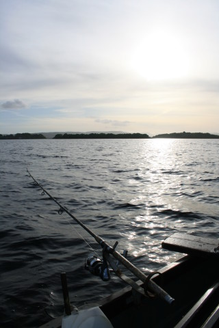 A Week on the Corrib