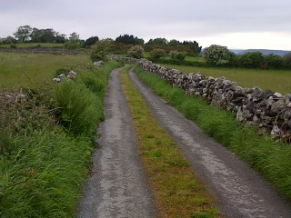 Single stone walls lining a road in Maghera