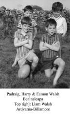 Padraig, Harry and Eamon Walsh, Bealnaleapa Liam Walsh Arvarna, Billamore top right