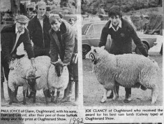Press cutting 1982. Oughterard Show