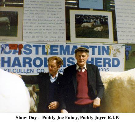 Show day, Paddy Joe fahy and Paddy Joyce