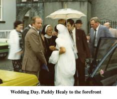 Paddy Healy