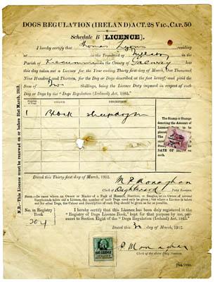 Dog Licence 1912. Thomas Lyons, Tullaboy