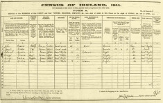 Census 1911. Melia family, Derrylaura