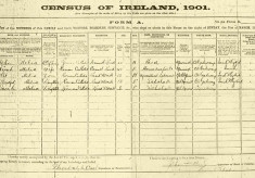 Census 1901. Melia family, Derrylaura