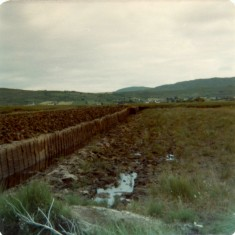 The bog, towards Glengowla. 1976 | Paul Finnegan
