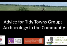 Archaeology in the Community Advice for Tidy Towns and Community Groups