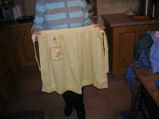 Mary Kyne's apron . Made in school 1958.
