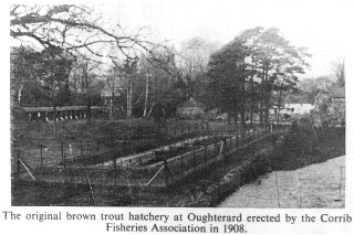 Fish Hatchery at Oughterard