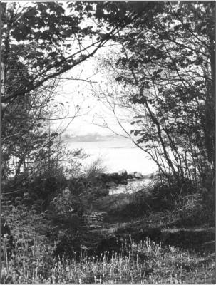 Inchagoill, Lough Corrib's Largest Island
